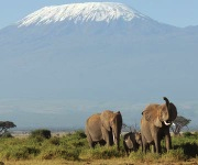Climbing Mt Kilimanjaro – Stories from climbers of the mountain