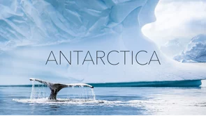 Breathless in Antarctica